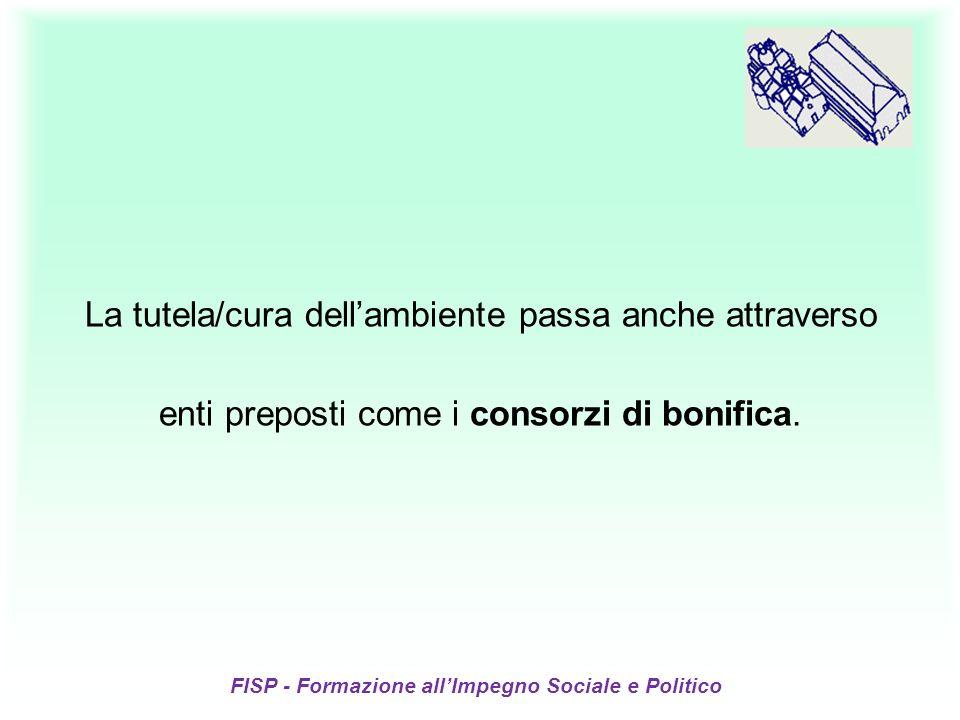 FISP - Formazione allImpegno Sociale e Politico La tutela/cura dellambiente passa anche attraverso enti preposti come i consorzi di bonifica.