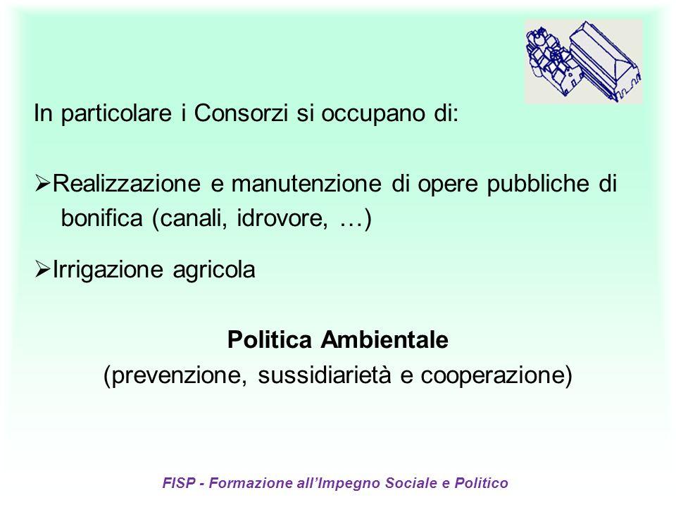 FISP - Formazione allImpegno Sociale e Politico In particolare i Consorzi si occupano di: Realizzazione e manutenzione di opere pubbliche di bonifica (canali, idrovore, …) Irrigazione agricola Politica Ambientale (prevenzione, sussidiarietà e cooperazione)