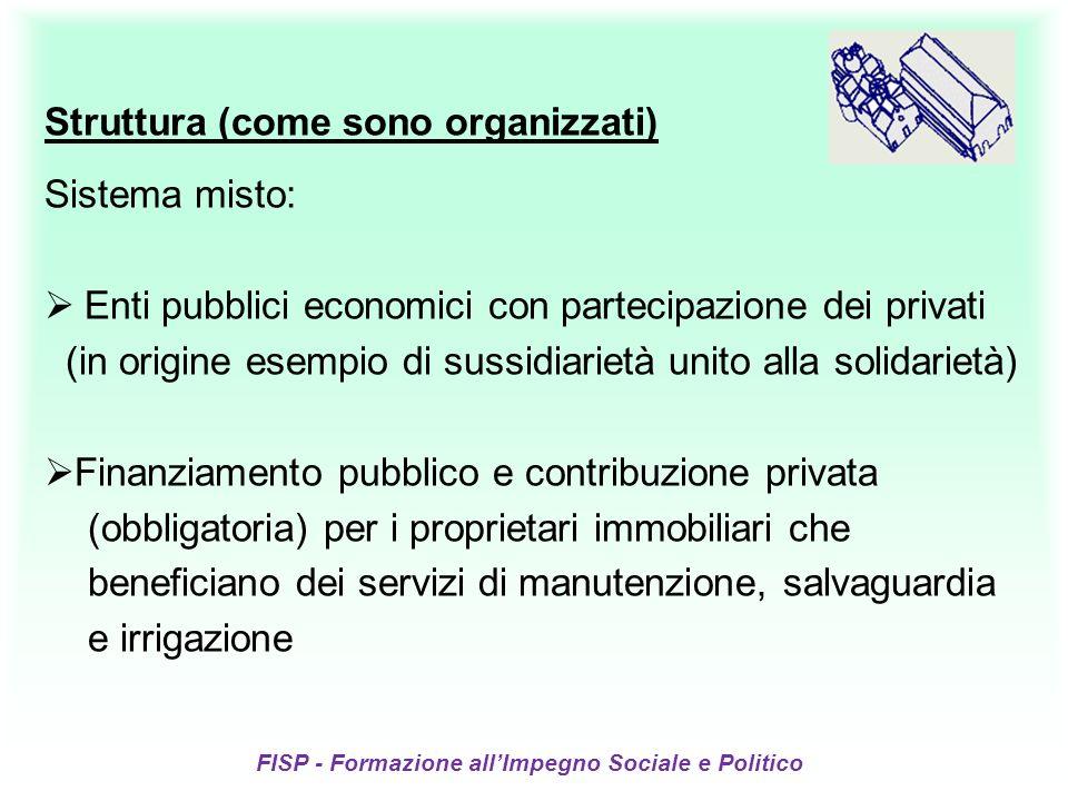 FISP - Formazione allImpegno Sociale e Politico Struttura (come sono organizzati) Sistema misto: Enti pubblici economici con partecipazione dei privat