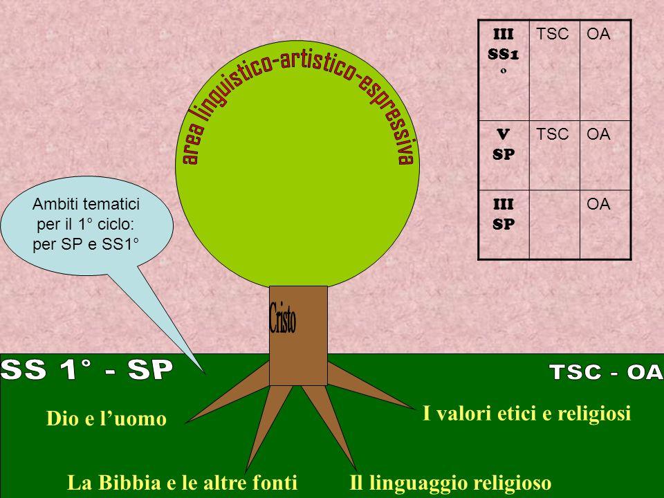 La Bibbia e le altre fonti Dio e luomo I valori etici e religiosi Il linguaggio religioso Ambiti tematici per il 1° ciclo: per SP e SS1° III SS1 ° TSCOA V SP TSCOA III SP OA