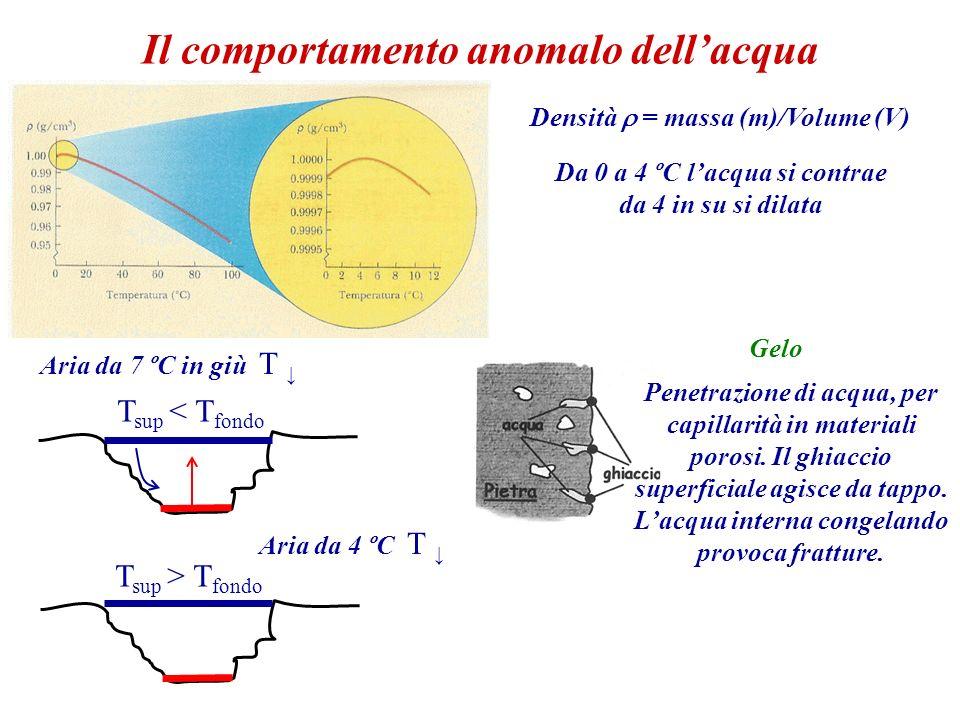 Il comportamento anomalo dellacqua Densità = massa (m)/Volume (V) Da 0 a 4 ºC lacqua si contrae da 4 in su si dilata Aria da 7 ºC in giù T Aria da 4 º