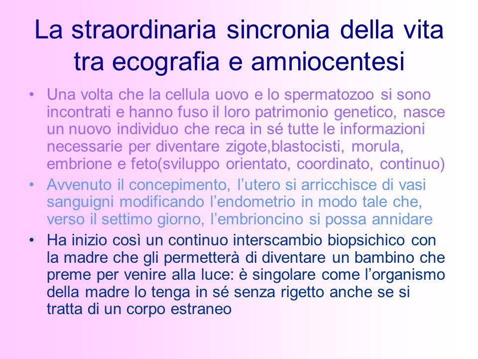 La straordinaria sincronia della vita tra ecografia e amniocentesi Una volta che la cellula uovo e lo spermatozoo si sono incontrati e hanno fuso il l