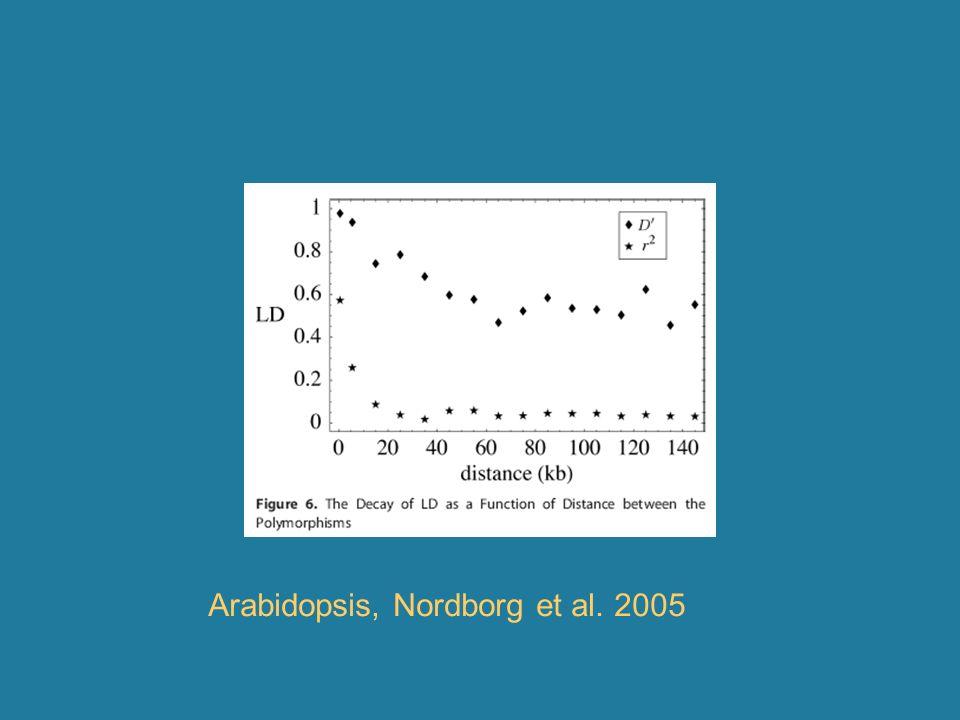 Arabidopsis, Nordborg et al. 2005