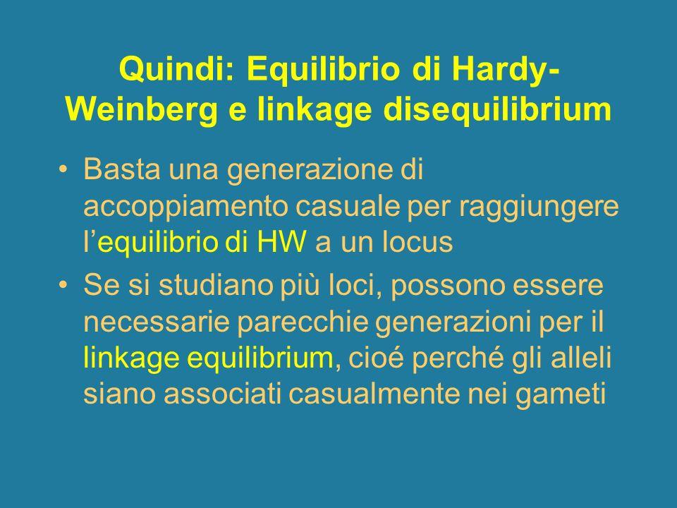 Quindi: Equilibrio di Hardy- Weinberg e linkage disequilibrium Basta una generazione di accoppiamento casuale per raggiungere lequilibrio di HW a un l