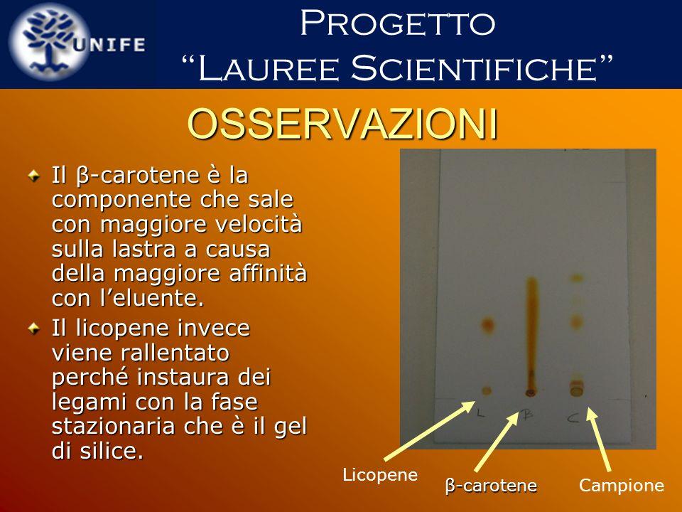 OSSERVAZIONI Il β-carotene è la componente che sale con maggiore velocità sulla lastra a causa della maggiore affinità con leluente. Il licopene invec