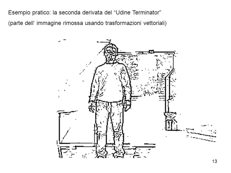 13 Esempio pratico: la seconda derivata del Udine Terminator (parte dell immagine rimossa usando trasformazioni vettoriali)