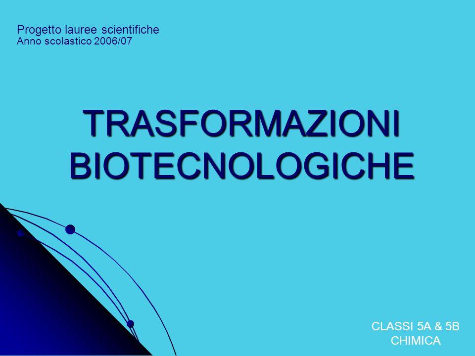 TRASFORMAZIONI BIOTECNOLOGICHE Progetto lauree scientifiche CLASSI 5A & 5B CHIMICA Anno scolastico 2006/07