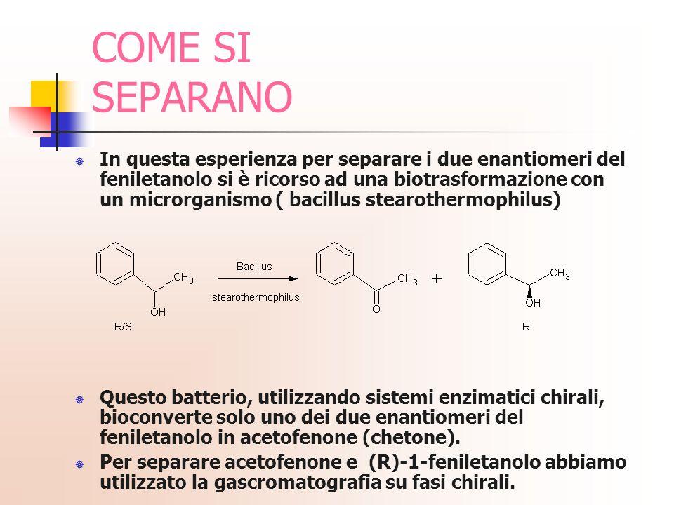 In questa esperienza per separare i due enantiomeri del feniletanolo si è ricorso ad una biotrasformazione con un microrganismo ( bacillus stearotherm