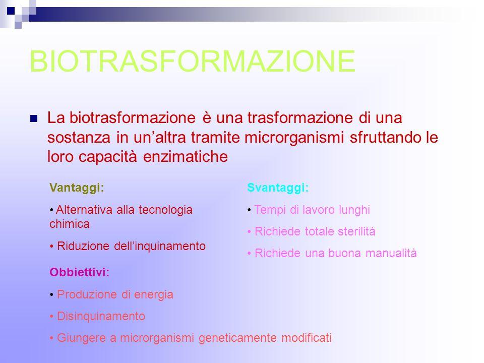 BIOTRASFORMAZIONE La biotrasformazione è una trasformazione di una sostanza in unaltra tramite microrganismi sfruttando le loro capacità enzimatiche V