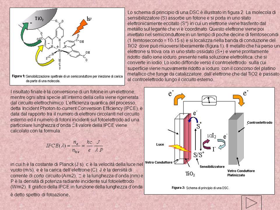 Lo schema di principio di una DSC è illustrato in figura 2. La molecola di sensibilizzatore (S) assorbe un fotone e si porta in uno stato elettronicam