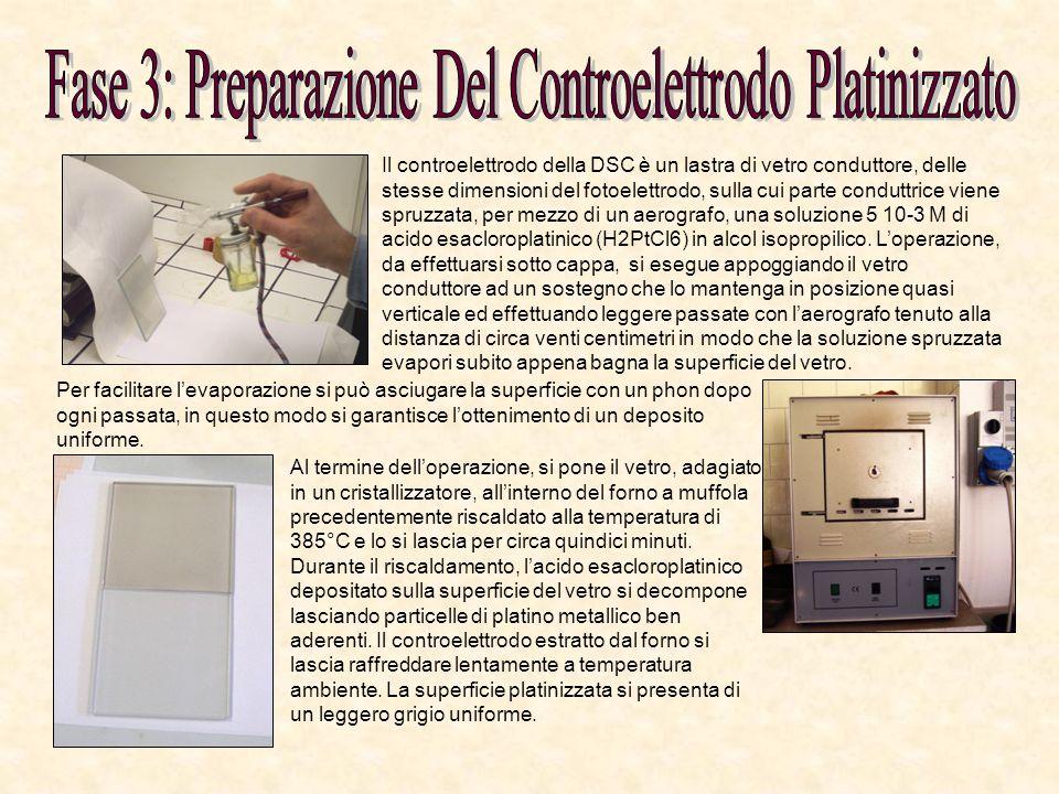 Il controelettrodo della DSC è un lastra di vetro conduttore, delle stesse dimensioni del fotoelettrodo, sulla cui parte conduttrice viene spruzzata,