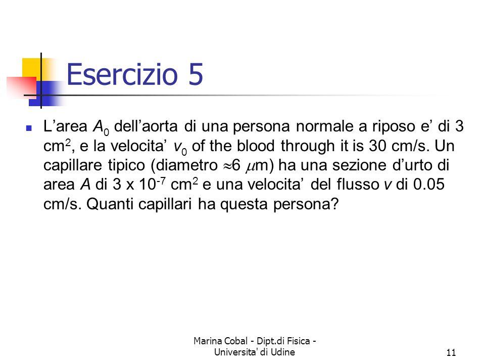 Marina Cobal - Dipt.di Fisica - Universita' di Udine11 Esercizio 5 Larea A 0 dellaorta di una persona normale a riposo e di 3 cm 2, e la velocita v 0