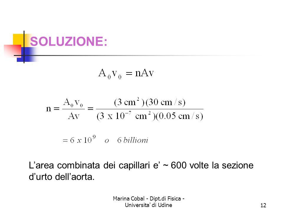 Marina Cobal - Dipt.di Fisica - Universita' di Udine12 SOLUZIONE: Larea combinata dei capillari e ~ 600 volte la sezione durto dellaorta.