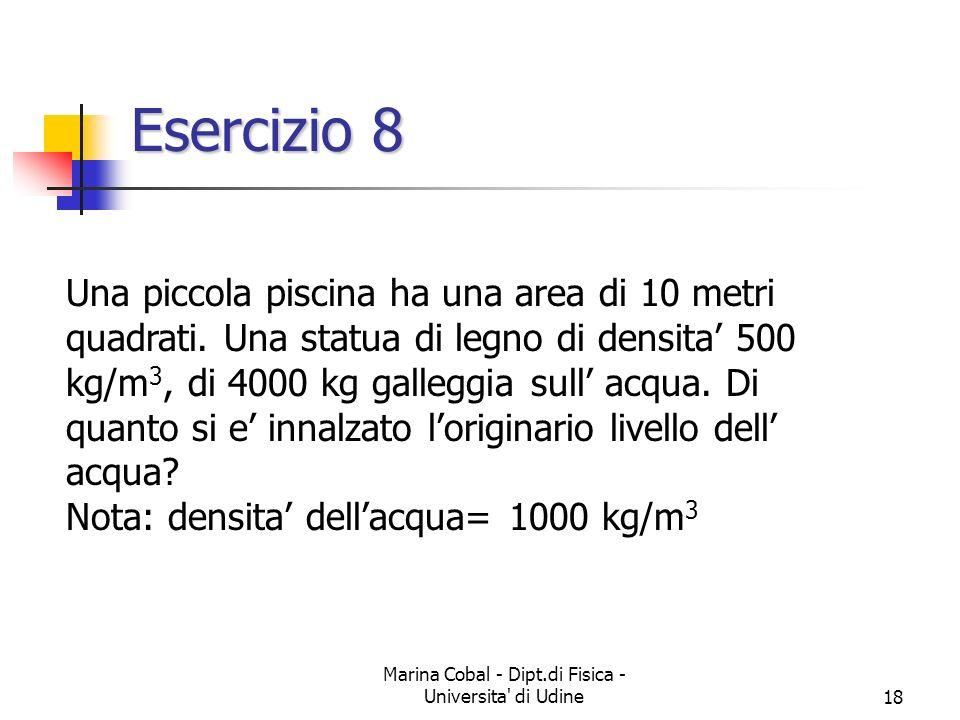 Marina Cobal - Dipt.di Fisica - Universita' di Udine18 Esercizio 8 Una piccola piscina ha una area di 10 metri quadrati. Una statua di legno di densit