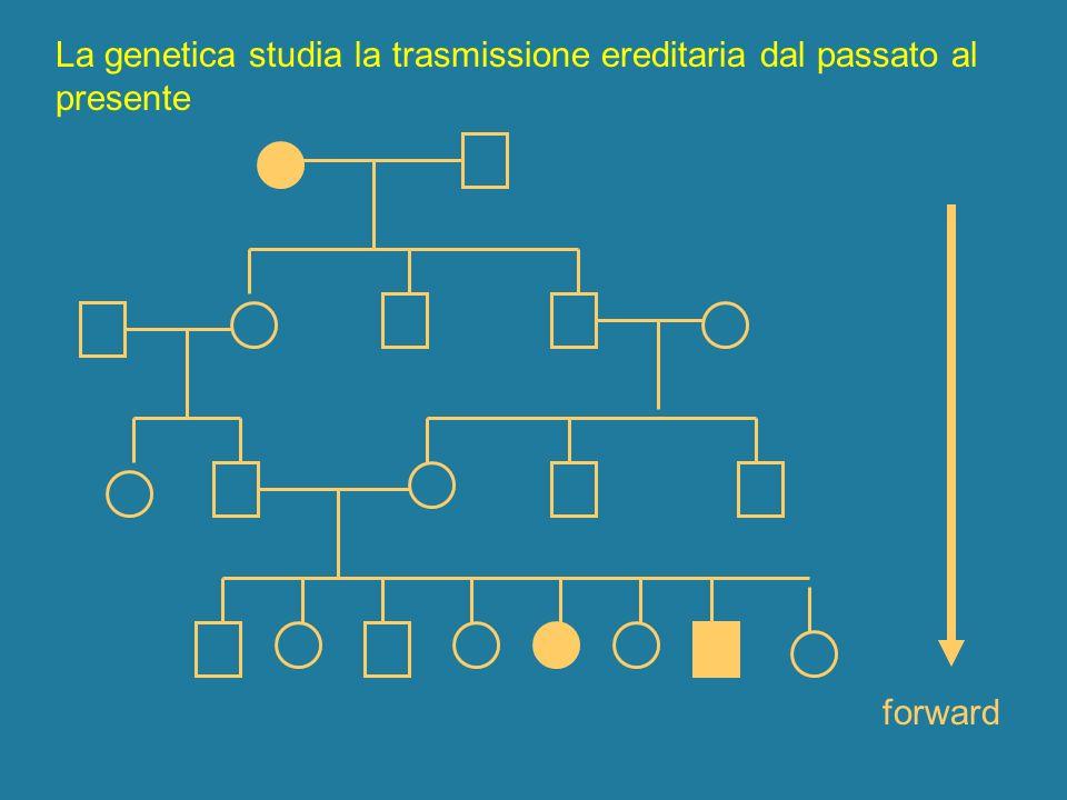 La genetica studia la trasmissione ereditaria dal passato al presente forward