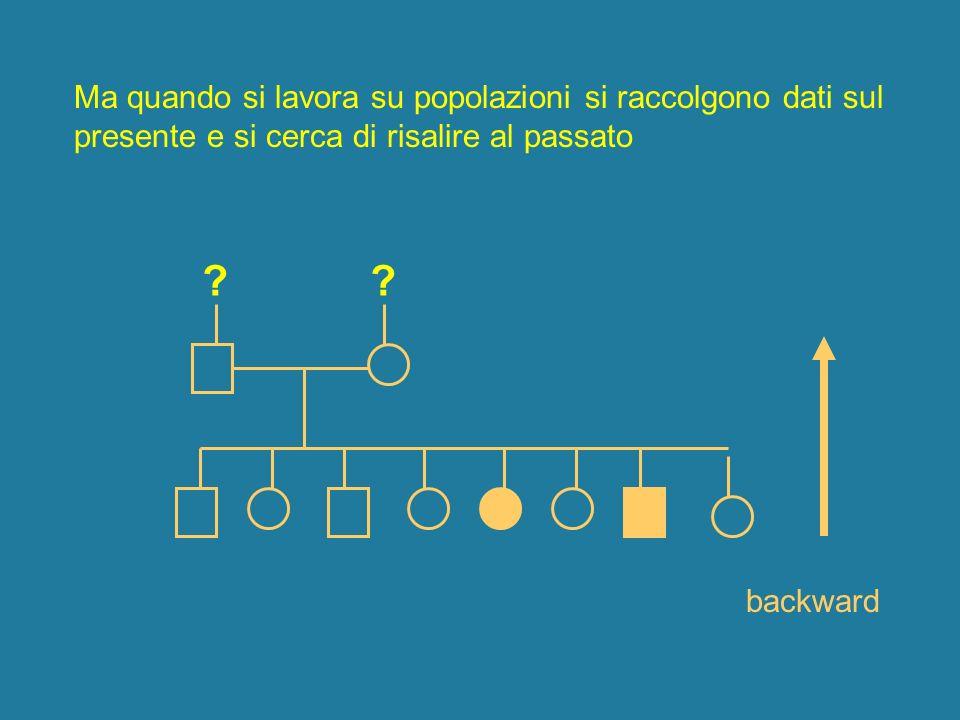 Ma quando si lavora su popolazioni si raccolgono dati sul presente e si cerca di risalire al passato ? ? backward