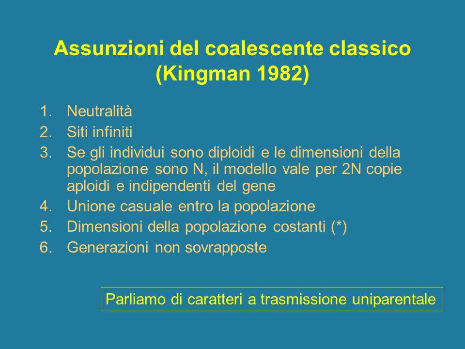 Assunzioni del coalescente classico (Kingman 1982) 1.Neutralità 2.Siti infiniti 3.Se gli individui sono diploidi e le dimensioni della popolazione son
