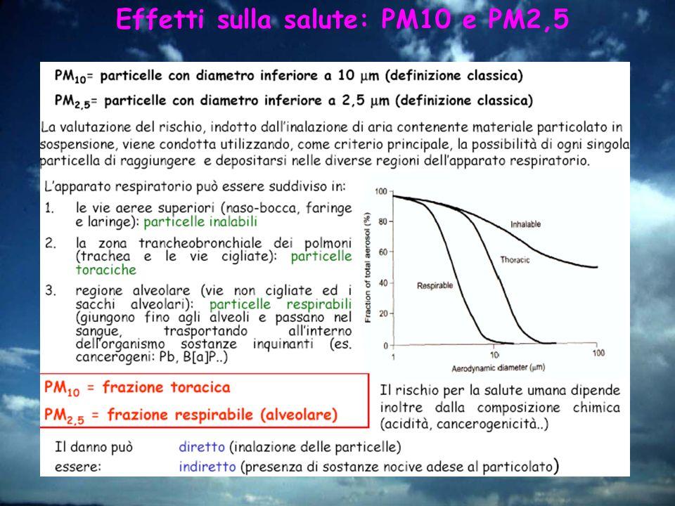 Effetti sulla salute: PM10 e PM2,5