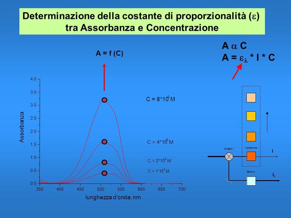 C = 4*10 -5 M C = 2*10 -5 M C = 1*10 -5 M A C A = * l * C Determinazione della costante di proporzionalità ( ) tra Assorbanza e Concentrazione 3504004