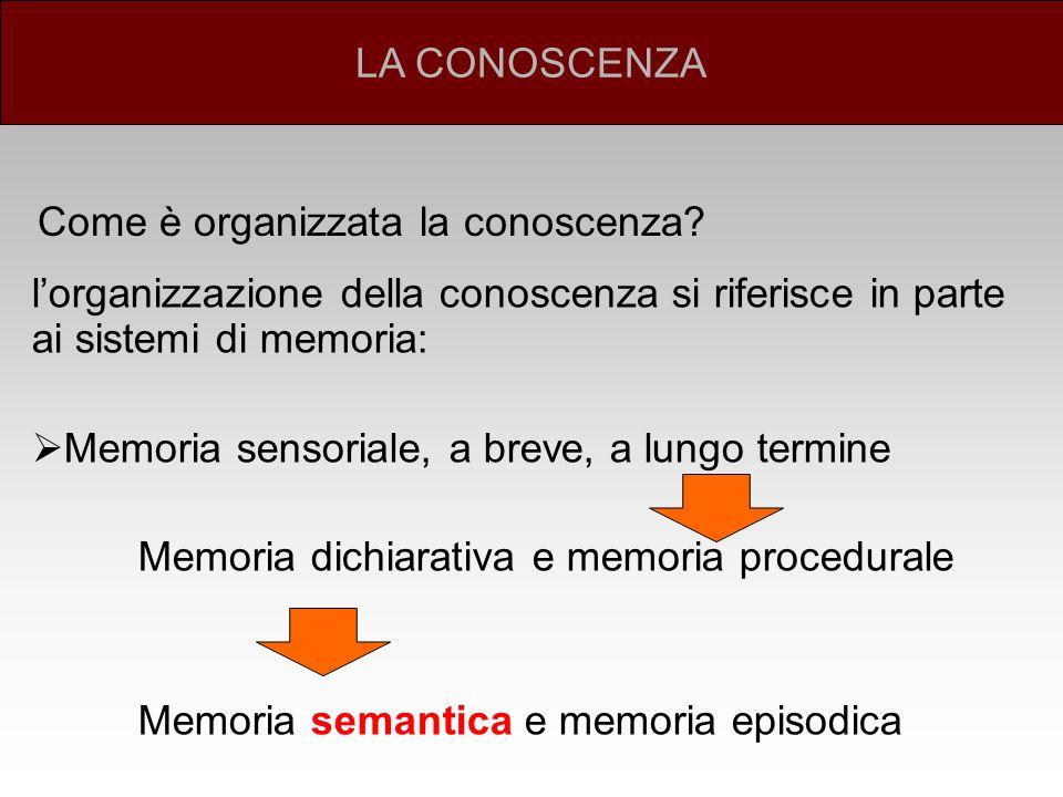 La memoria procedurale (sapere come) si riferisce alle conoscenze di cui facciamo uso nel mettere in atto procedure E una forma di conoscenza implicita (non consapevole) La memoria dichiarativa (sapere cosa) si riferisce alla conoscenza esplicita di fatti, significati di parole e simboli o le circostanze in cui abbiamo conosciuto una persona E una forma di conoscenza esplicita (consapevole) ORGANIZZAZIONE DELLA CONOSCENZA