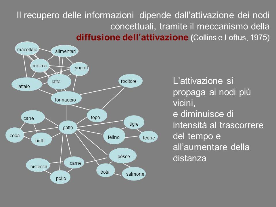 Il recupero delle informazioni dipende dallattivazione dei nodi concettuali, tramite il meccanismo della diffusione dellattivazione (Collins e Loftus,