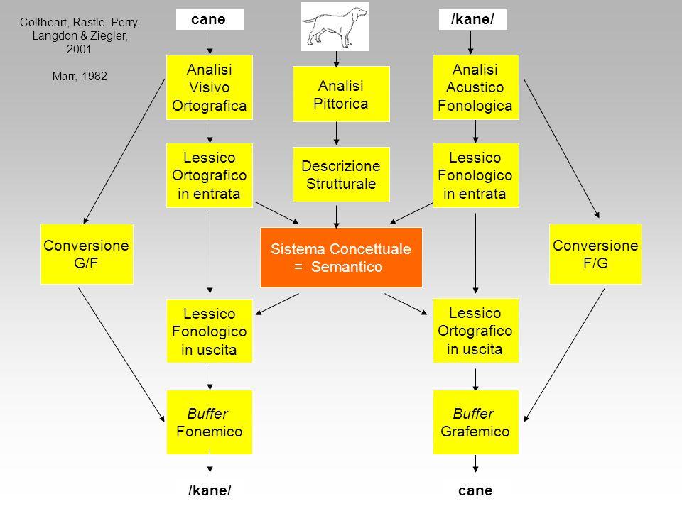 Sistema Concettuale = Semantico Lessico Ortografico in entrata Descrizione Strutturale Conversione G/F Conversione F/G Lessico Fonologico in entrata L