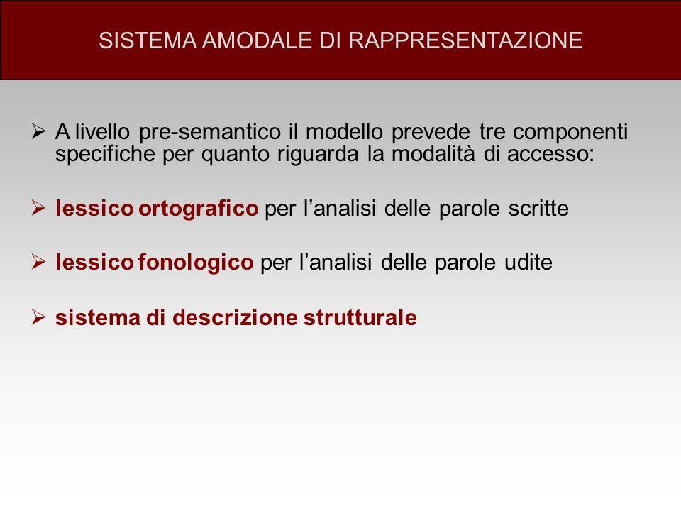 A livello pre-semantico il modello prevede tre componenti specifiche per quanto riguarda la modalità di accesso: lessico ortografico per lanalisi dell