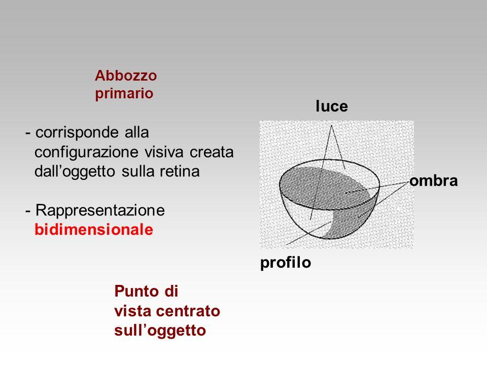 - corrisponde alla configurazione visiva creata dalloggetto sulla retina - Rappresentazione bidimensionale luce ombra profilo Abbozzo primario Punto d