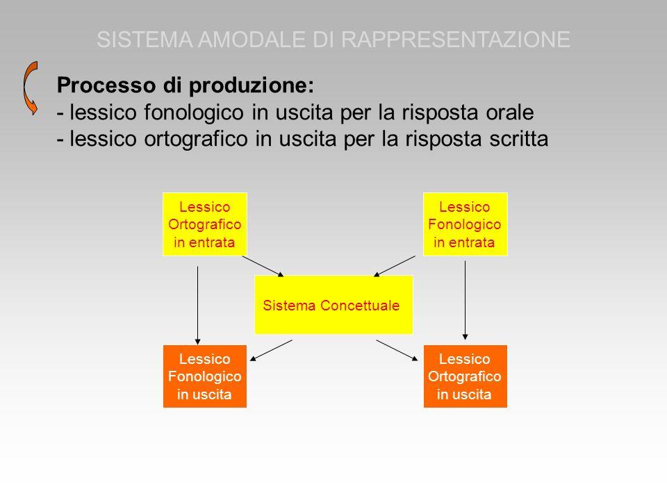 Processo di produzione: - lessico fonologico in uscita per la risposta orale - lessico ortografico in uscita per la risposta scritta SISTEMA AMODALE D