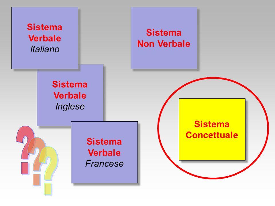 Proposizionali (proposizioni: rappresentazioni astratte degli oggetti e degli eventi) Simboliche Interne Analogiche (immagini, modelli mentali) Rappresentano il contenuto ideativo della mente in una forma che non è specifica per nessuna lingua, per nessun codice, per nessuna modalità sensoriale
