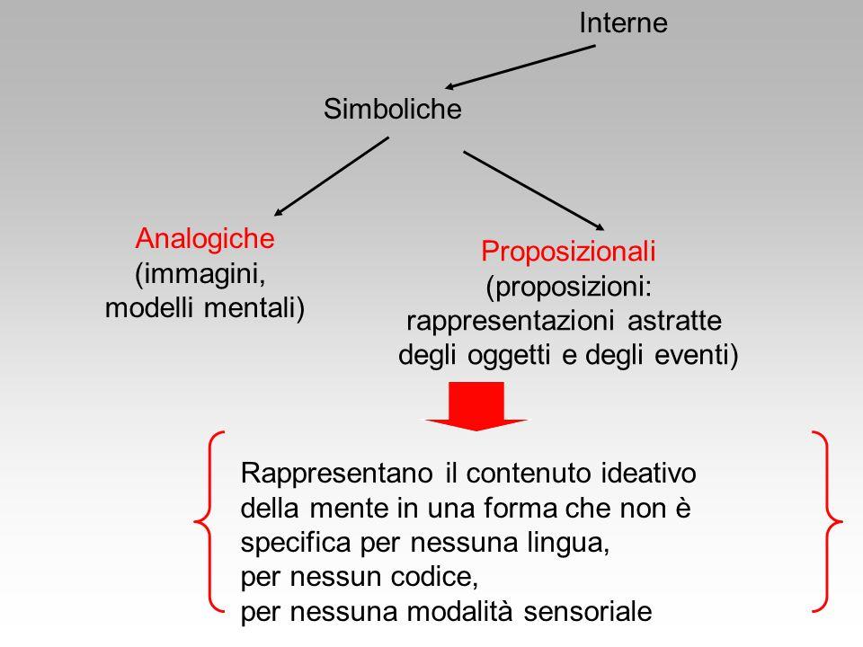 Proposizionali (proposizioni: rappresentazioni astratte degli oggetti e degli eventi) Simboliche Interne Analogiche (immagini, modelli mentali) Rappre