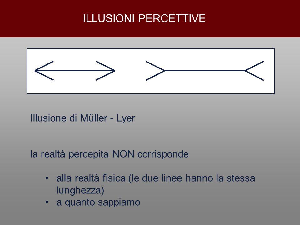 ILLUSIONI PERCETTIVE Illusione di Müller - Lyer la realtà percepita NON corrisponde alla realtà fisica (le due linee hanno la stessa lunghezza) a quan