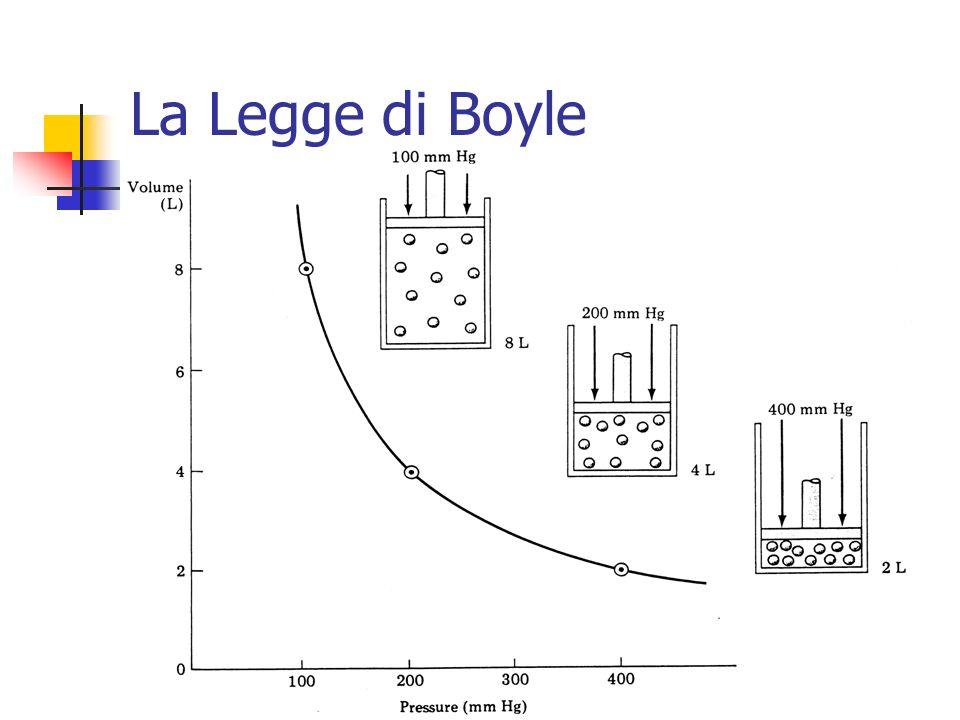 Marina Cobal - Dipt.di Fisica - Universita di Udine31 La Legge di Boyle