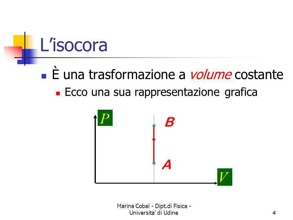 Marina Cobal - Dipt.di Fisica - Universita' di Udine4 Lisocora È una trasformazione a volume costante Ecco una sua rappresentazione grafica A B