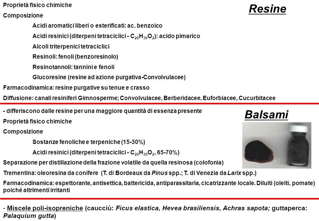 Proprietà fisico chimiche Composizione Acidi aromatici liberi o esterificati: ac. benzoico Acidi resinici (diterpeni tetraciclici - C 20 H 30 O 2 ): a
