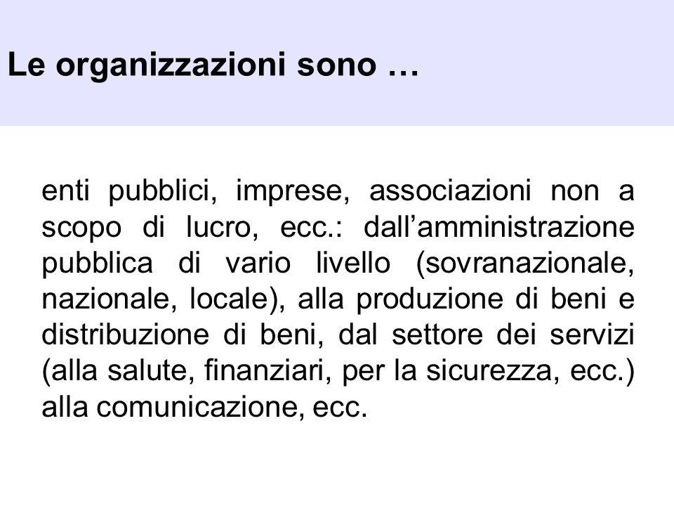 Le organizzazioni sono … enti pubblici, imprese, associazioni non a scopo di lucro, ecc.: dallamministrazione pubblica di vario livello (sovranazional