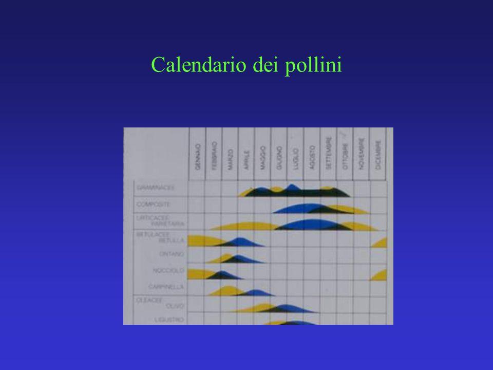 Funghi di importanza allergologica: Alternaria, Cladosporium, Aspergillus