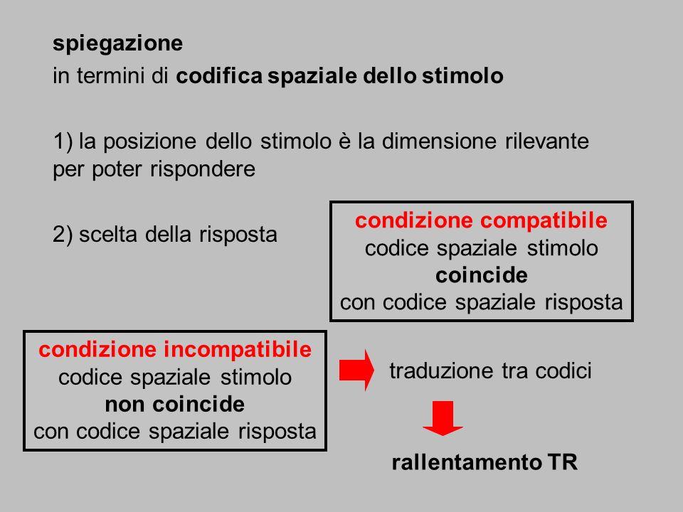 spiegazione in termini di codifica spaziale dello stimolo 1) la posizione dello stimolo è la dimensione rilevante per poter rispondere 2) scelta della