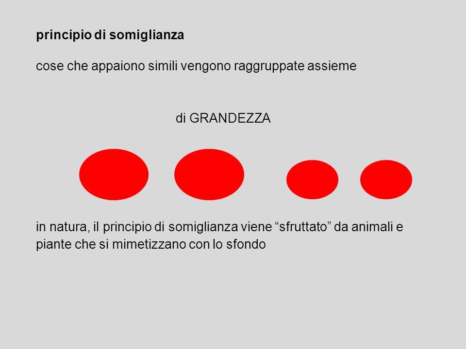 principio di somiglianza cose che appaiono simili vengono raggruppate assieme di GRANDEZZA in natura, il principio di somiglianza viene sfruttato da a