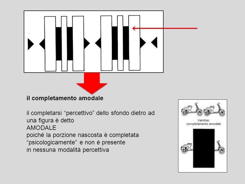 il completamento amodale il completarsi percettivo dello sfondo dietro ad una figura è detto AMODALE poiché la porzione nascosta è completata psicolog
