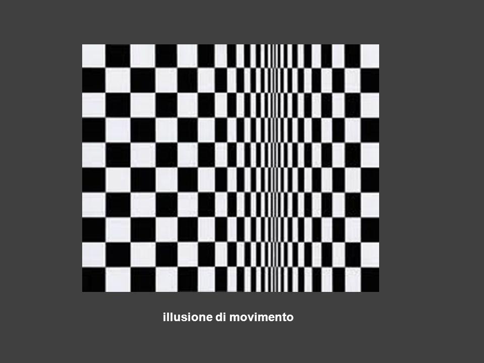 illusione di movimento