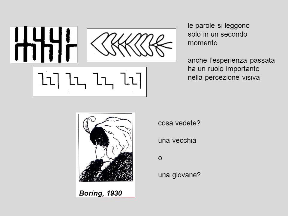 le parole si leggono solo in un secondo momento anche lesperienza passata ha un ruolo importante nella percezione visiva Boring, 1930 cosa vedete? una