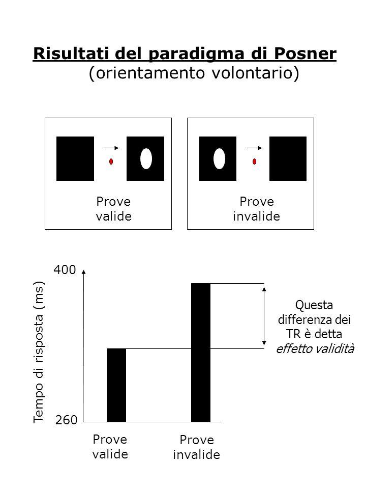 Risultati del paradigma di Posner (orientamento volontario) Prove valide Prove invalide Questa differenza dei TR è detta effetto validità Prove valide Prove invalide 260 400 Tempo di risposta (ms)