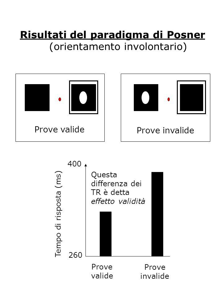 Risultati del paradigma di Posner (orientamento involontario) Prove valide Prove invalide Prove valide Prove invalide 260 400 Tempo di risposta (ms) Questa differenza dei TR è detta effetto validità