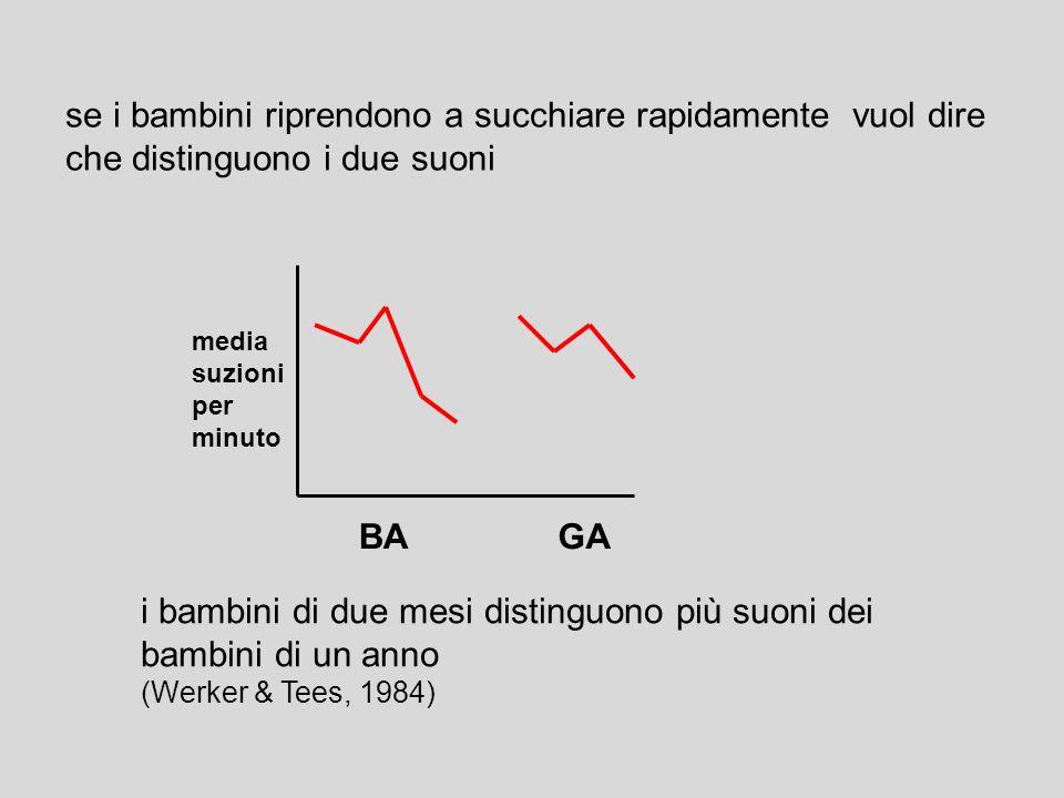 metodo di studio abituazione la risposta ad uno stimolo tende a diminuire di intensità col passare del tempo i bambini hanno un ciuccio collegato ad u