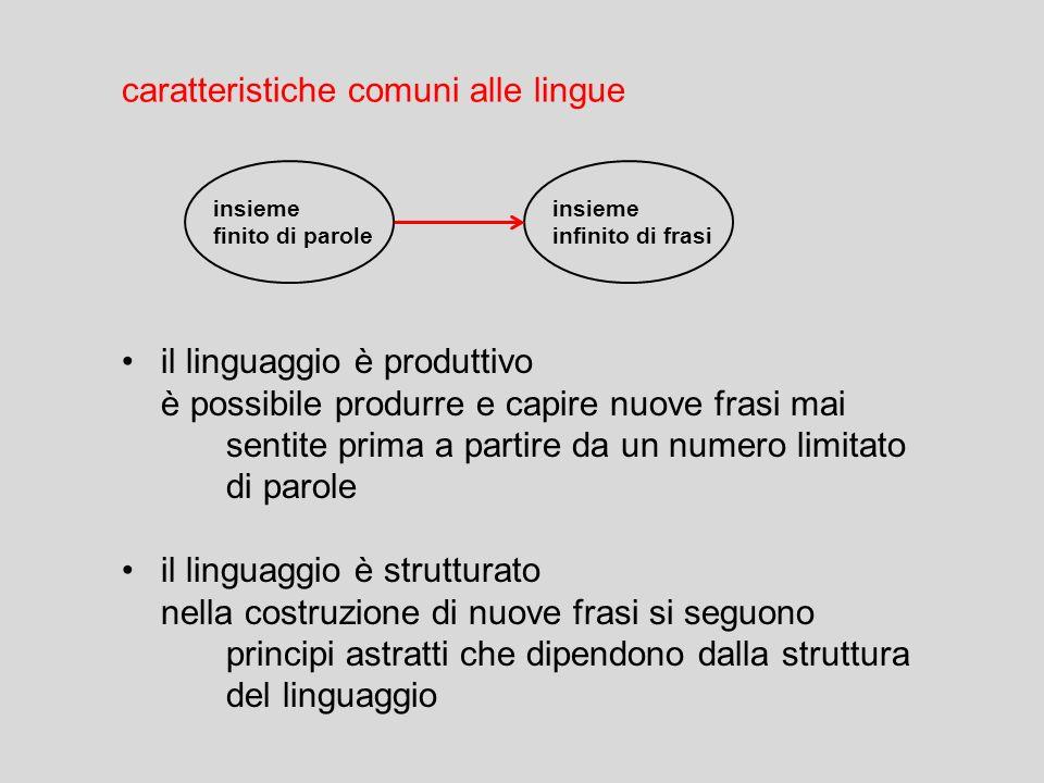 Linguaggio tutte le società umane in tutti i tempi e in tutti i luoghi hanno un linguaggio universali linguistici le lingue umane hanno caratteristich