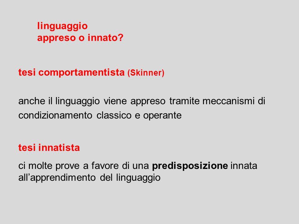 semanticasintassipragmatica significato delle parole insieme di regole per combinare le parole relazioni tra linguaggio e situazioni GRAMMATICA insiem