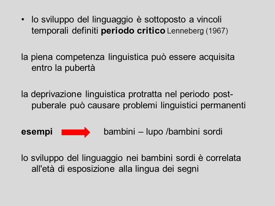 il linguaggio si sviluppa in un periodo di tempo relativamente breve in modo uniforme per tutti i bambini in presenza di un linguaggio adulto imperfet