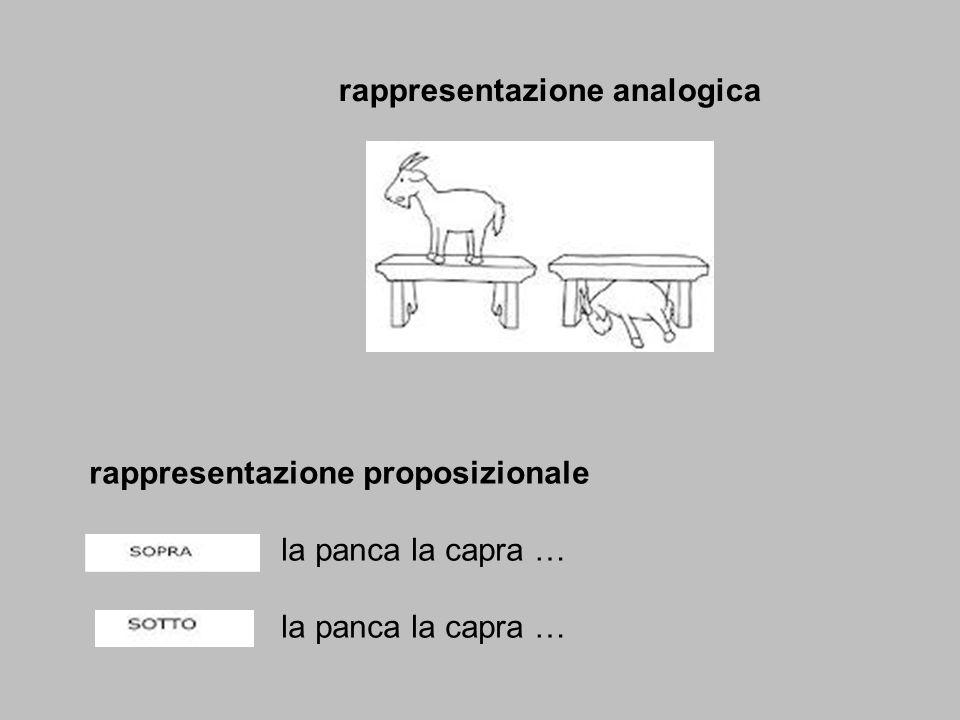 rappresentazione analogica rappresentazione proposizionale la panca la capra …