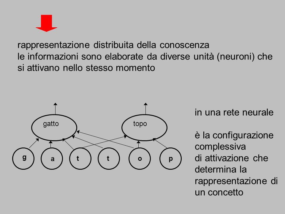 in una rete neurale è la configurazione complessiva di attivazione che determina la rappresentazione di un concetto g a tto gattotopo p rappresentazio